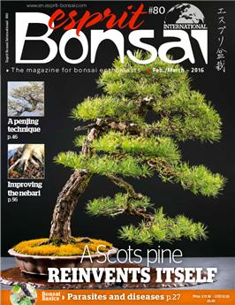 Esprit Bonsai International #80 Feb-March 2016